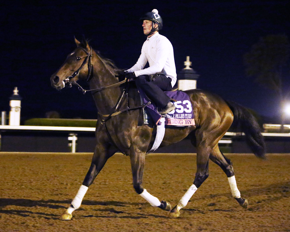 Gliding By - Morning Workout - Keeneland - 102615