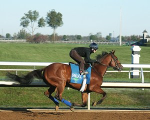 Grand Arch breezing at Keeneland - Keeneland Photo