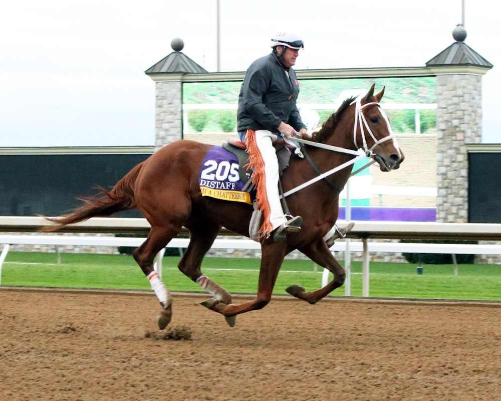 I'm A Chatterbox | Morning Workout | Keeneland | 10-26-15