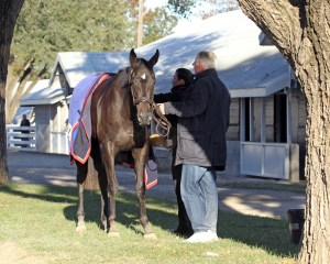 Nemoralia - Keeneland Photo