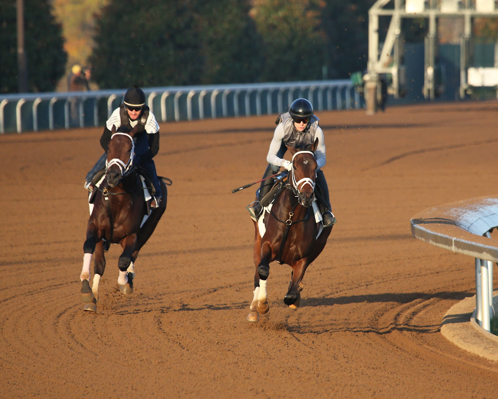 Rachel's Valentina (INSIDE) - Ransack (OUTSIDE) - Morning Workou