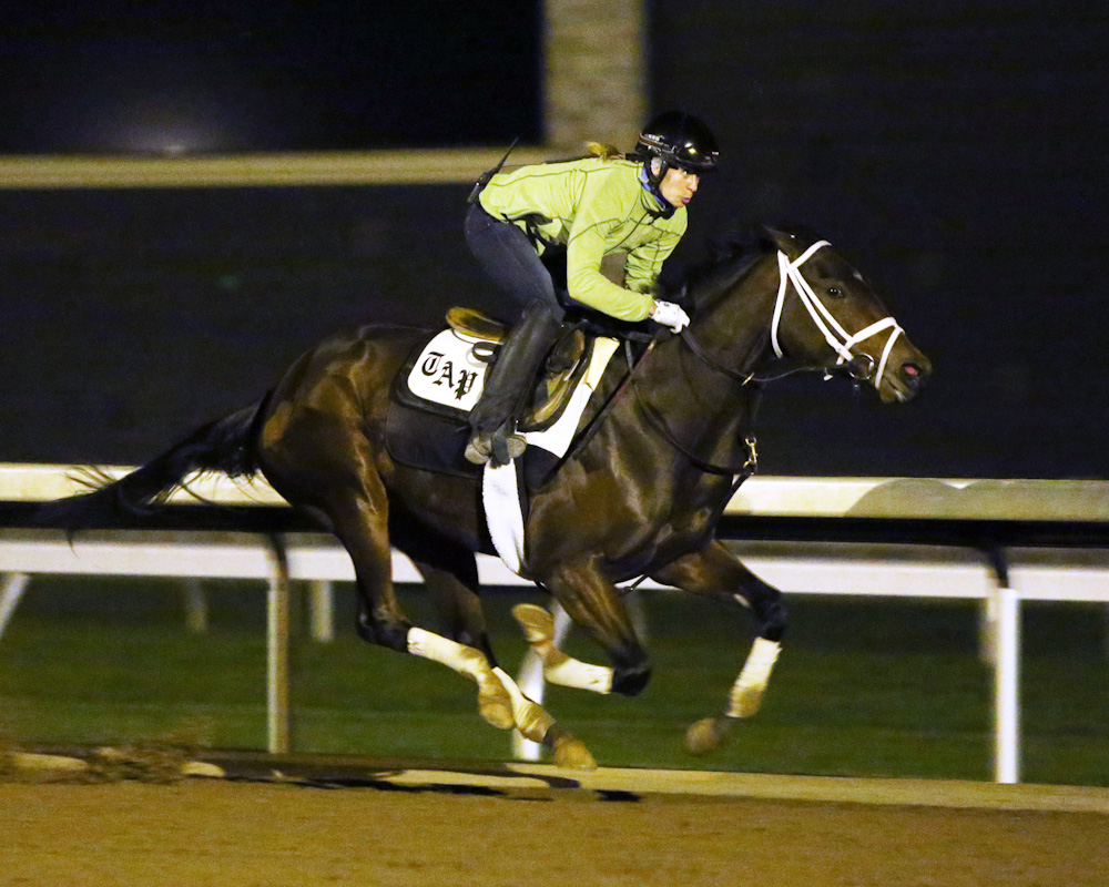 Rachel's Valentina breezing at Keeneland - Keeneland Photo
