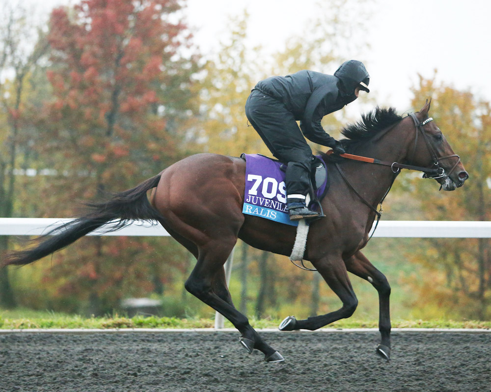 Ralis - Morning Training - Keeneland Race Course - 102715