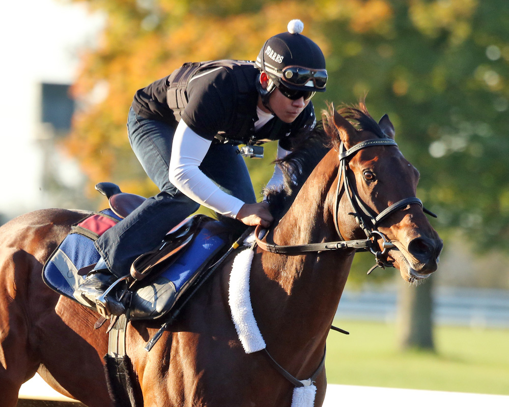 Runhappy - Morning Work - Keeneland - 102151-001