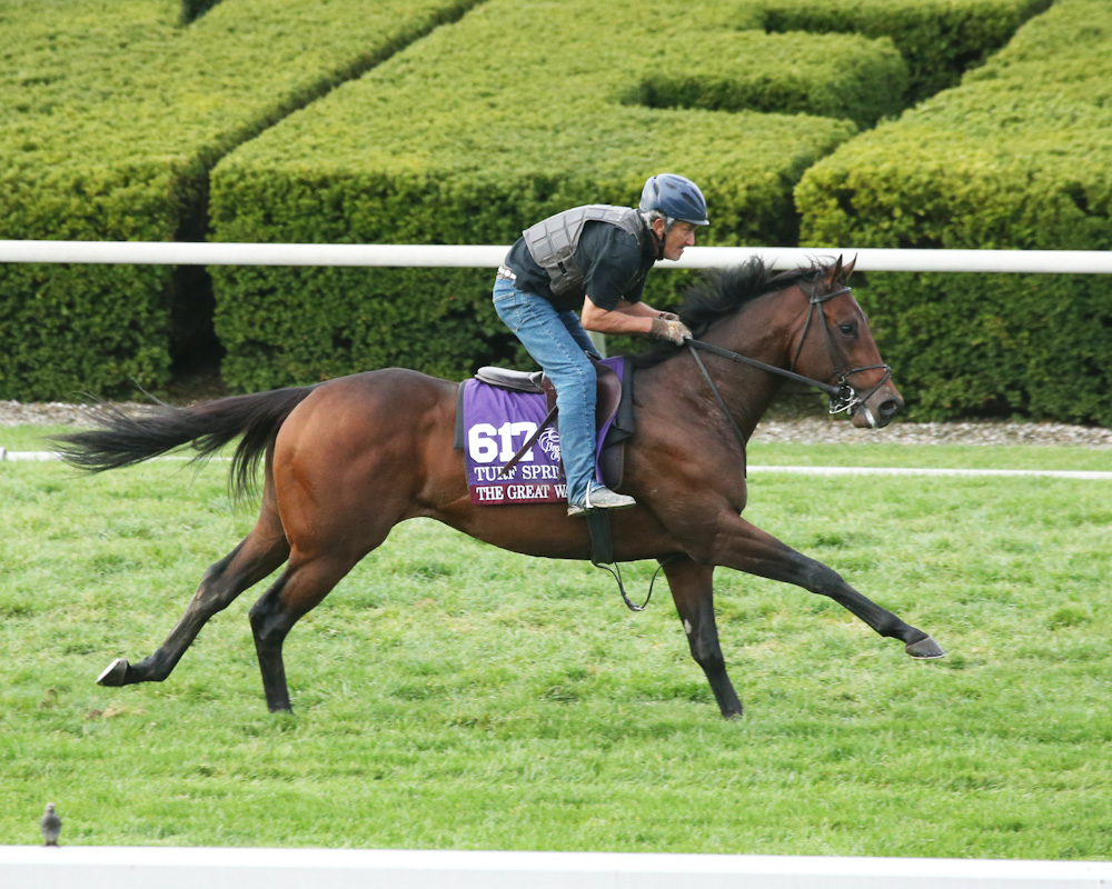 The Great War - Morning Workout - Keeneland - 102515