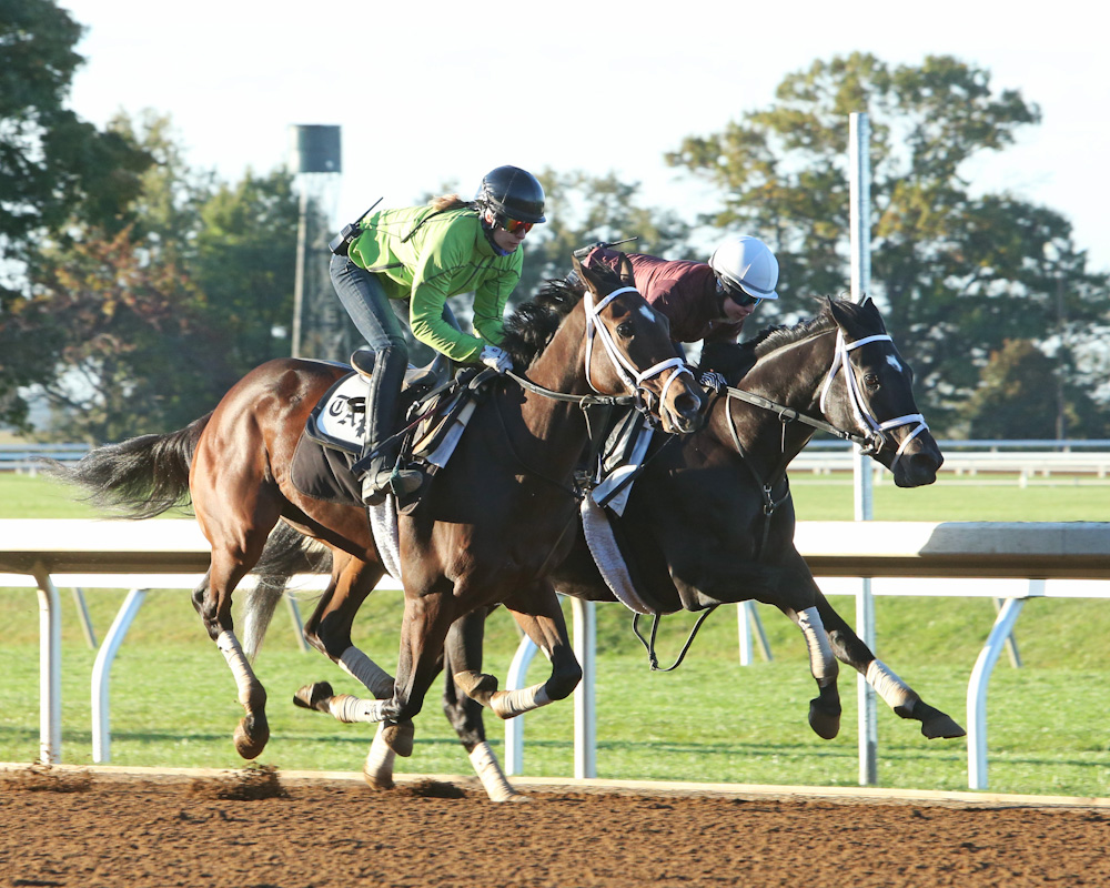 Thrilled (outside) and Azar (inside) breeze together at Keeneland - Keeneland Photo