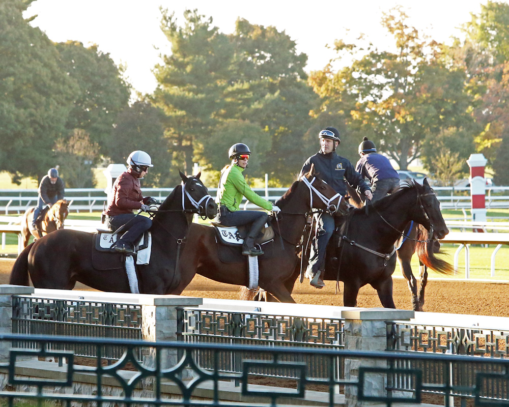 Thrilled and Azar during morning training at Keeneland - Keeneland Photo