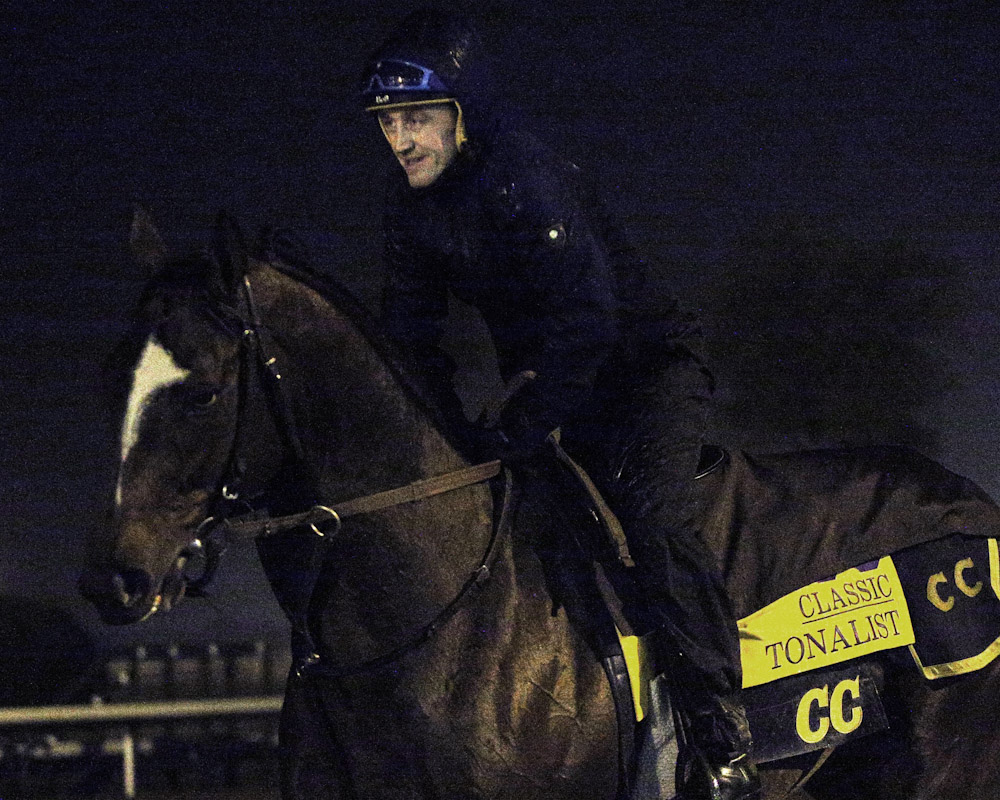 Tonalist - Morning Training - Keeneland - 102715
