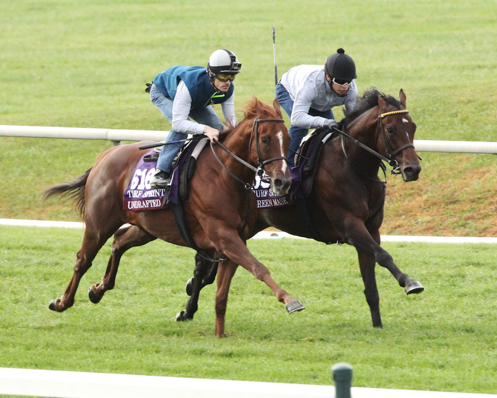 Well-Traveled Undrafted Set for Lucky Coin Stakes
