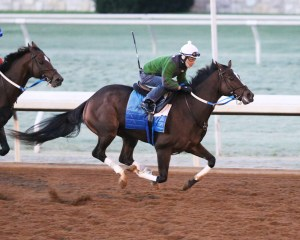 Untapable working at Keeneland - Keeneland Photo