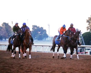 Untapable - Keeneland Photo