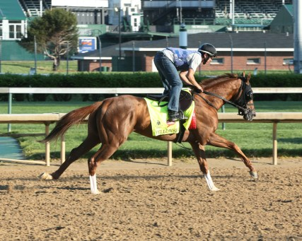 Fellowship galloping at Churchill Downs - Coady Photography