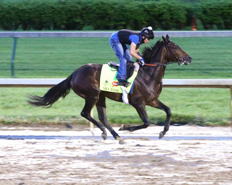 Mo Tom galloping at Churchill Downs - Coady Photography