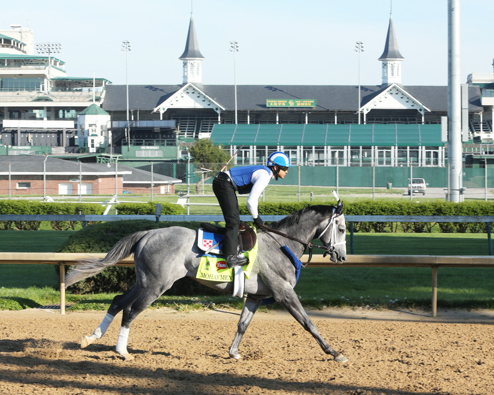 Mohaymen Gallops at Churchill, Will Breeze on Wednesday