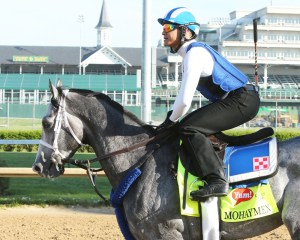 Mohaymen galloping at Churchill Downs - Coady Photography/Churchill Downs