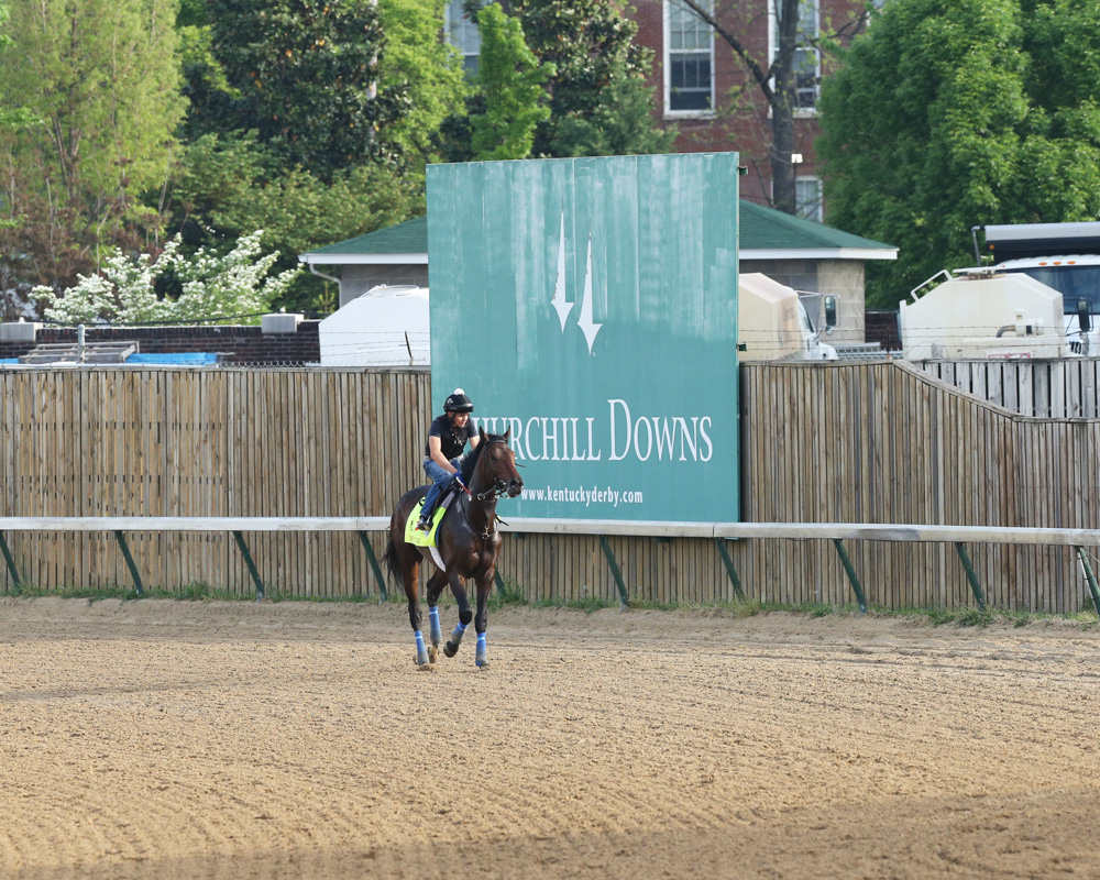 The Morning at Churchill in Photos and Videos, 4-26-16
