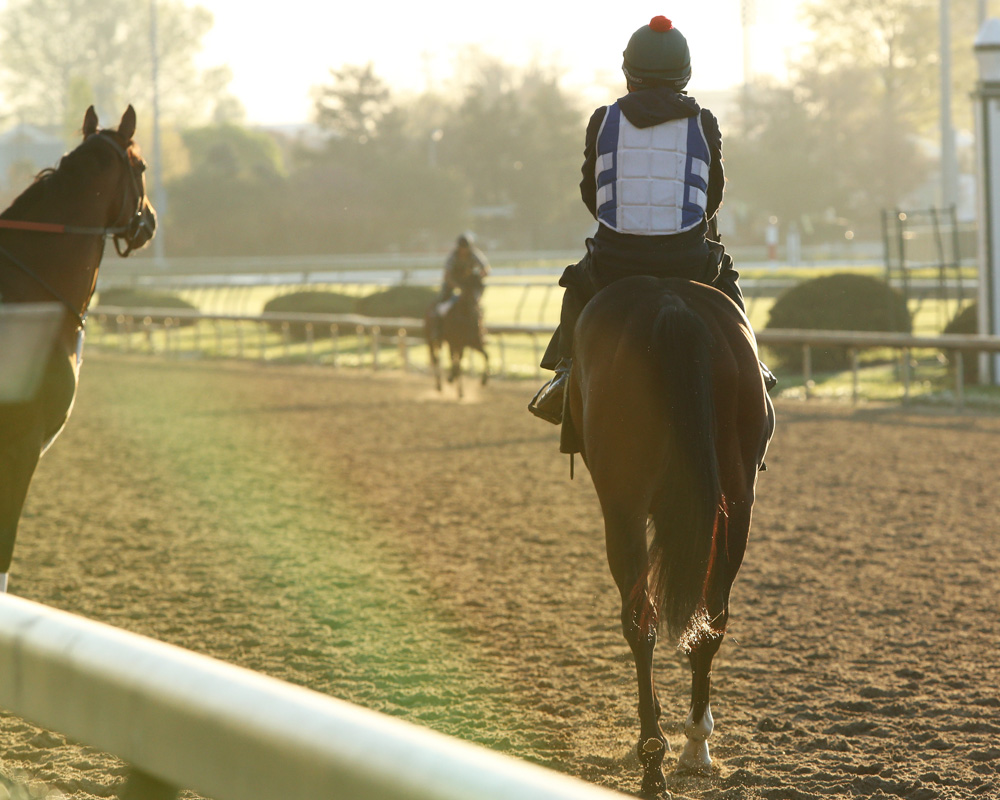 The Birthdates of the 2016 Derby Contenders
