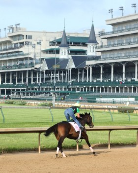Carina Mia at Churchill Downs - Coady Photography