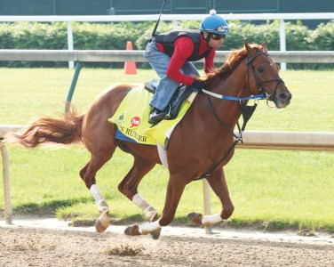 Gun Runner breezing at Churchill Downs - Coady Photography
