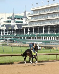 Tom's Ready galloping at Churchill Downs - Coady Photography