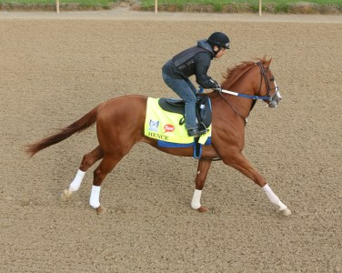 Hence galloping at Churchill Downs - Coady Photography