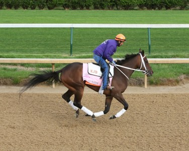 Miss Sky Warrior galloping at Churchill Downs - Coady Photography