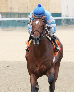 Dak Attack breaking his maiden at Churchill Downs - Coady Photography