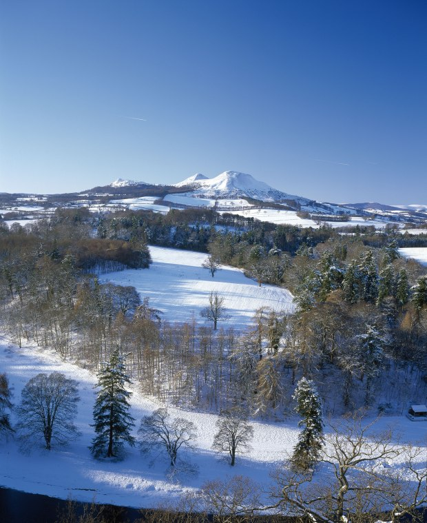 Eildons in the Snow