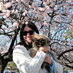 How I Accidentally Adopted a Dog in Korea