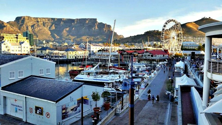 two weeks in south africa-cape town