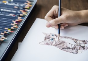 woman drawing cat doodle