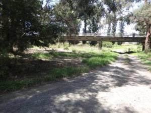 Tom's Bridge, Latrobe River