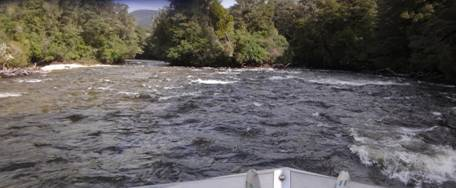 Jetboating: Wairaurahiri River