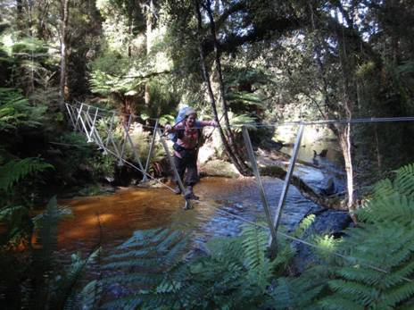 Crombie Stream Walkwire South Coast Track Fiordland NZ