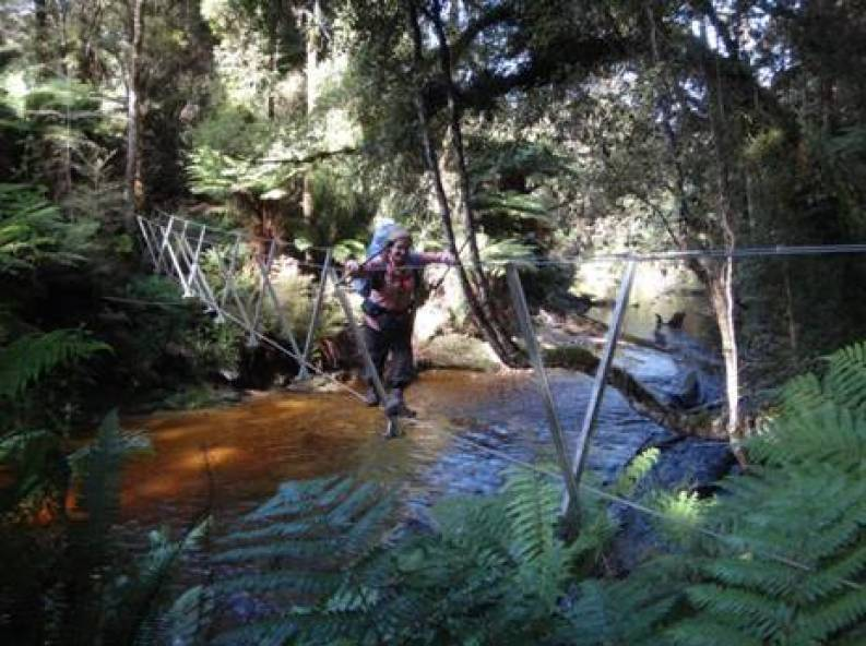 Crombie Stream Walkwire South Coast Track Fiordland NZ