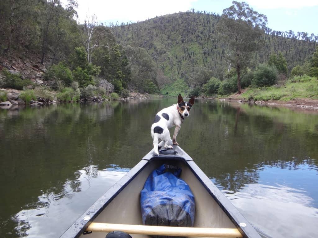 Canoeing Gippsland's Rivers