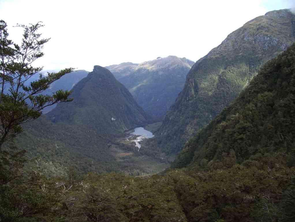 Fiordland NZ 2006 (117)