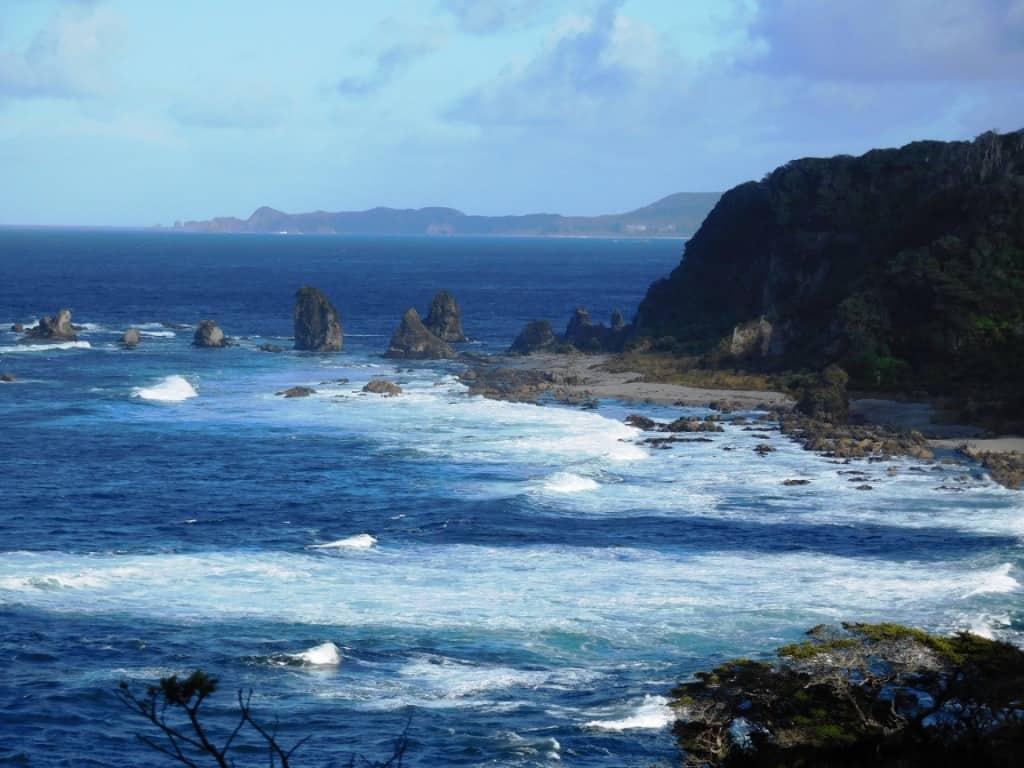 Westies Hut: South Coast Track Fiordland NZ