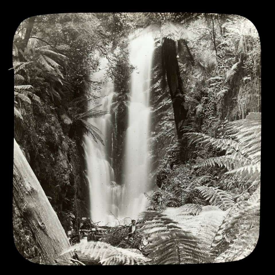Secrets of the Yarra: Walsh's Creek & Yarra Falls: