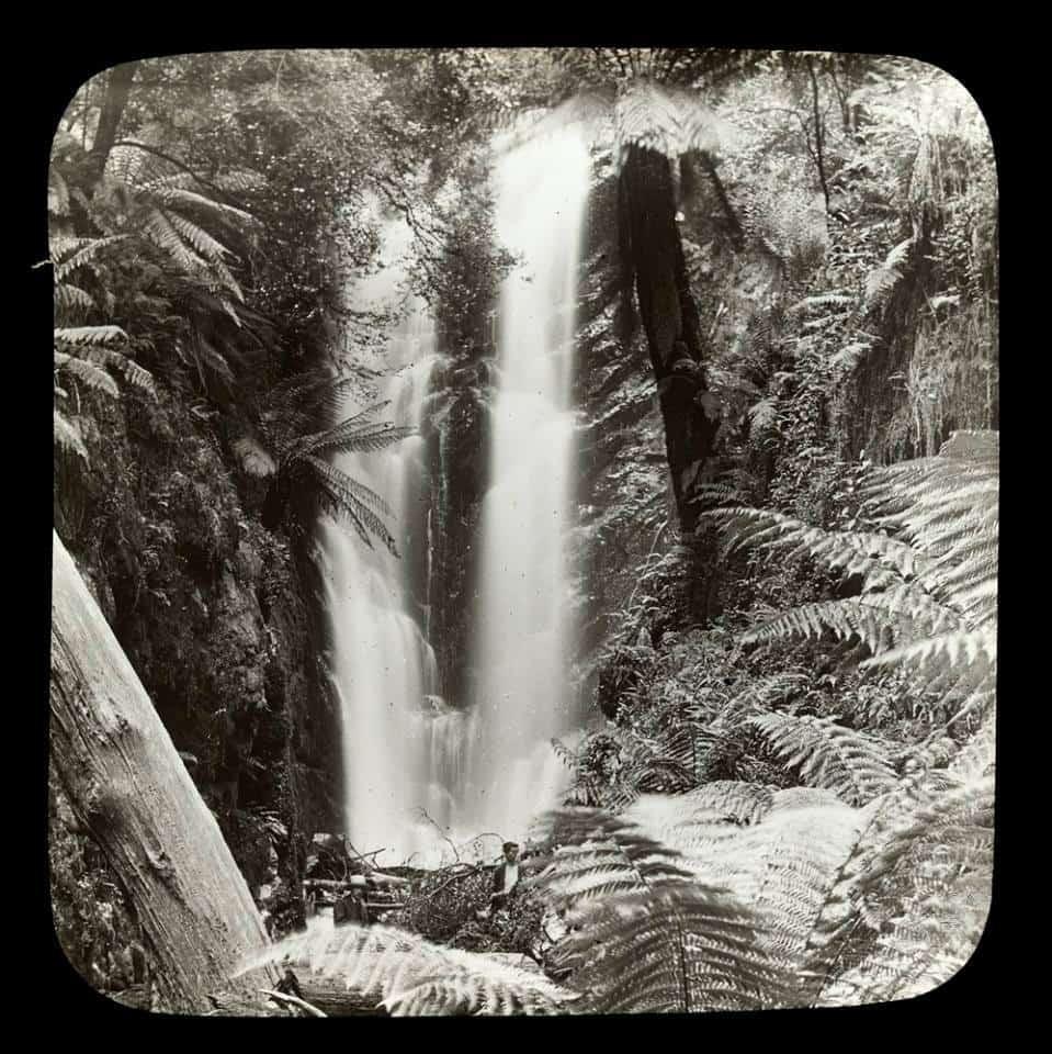 Secrets of the Yarra: Walsh's Creek & Yarra Falls: