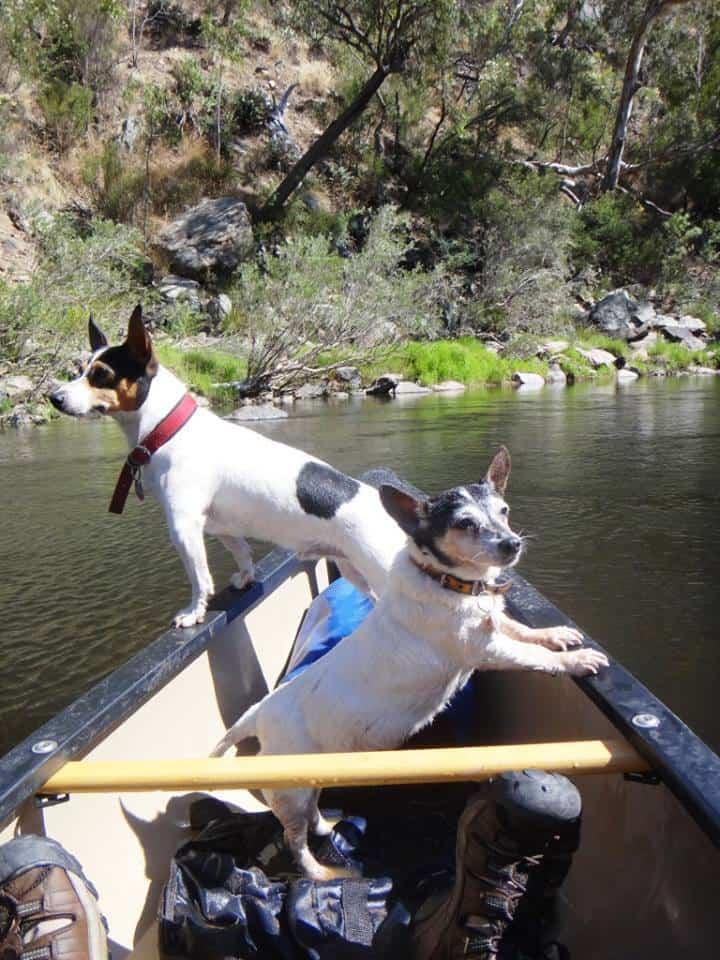 Canoe Wonnangatta: