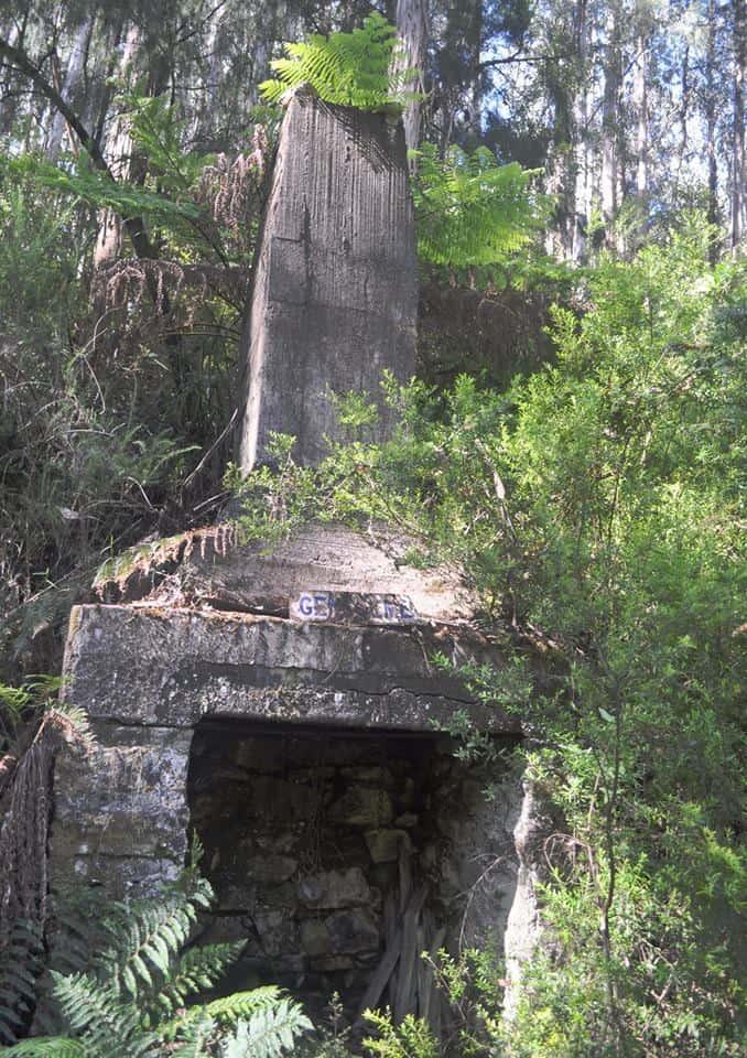 Yarra Falls Shelter House: