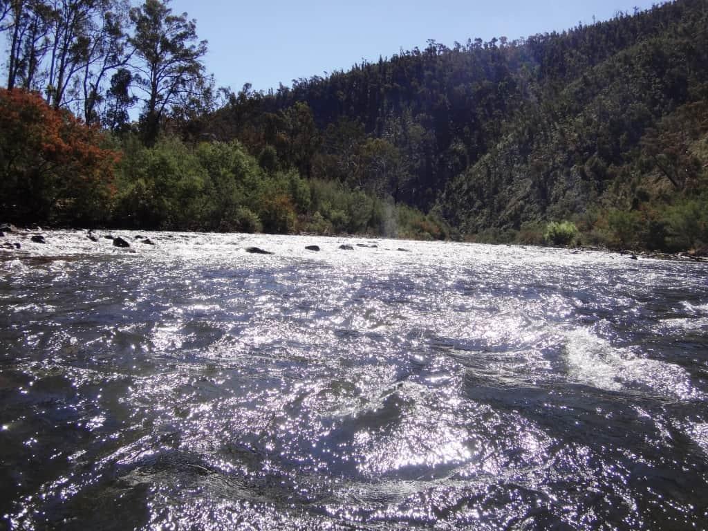 Silver River, Endless Sky