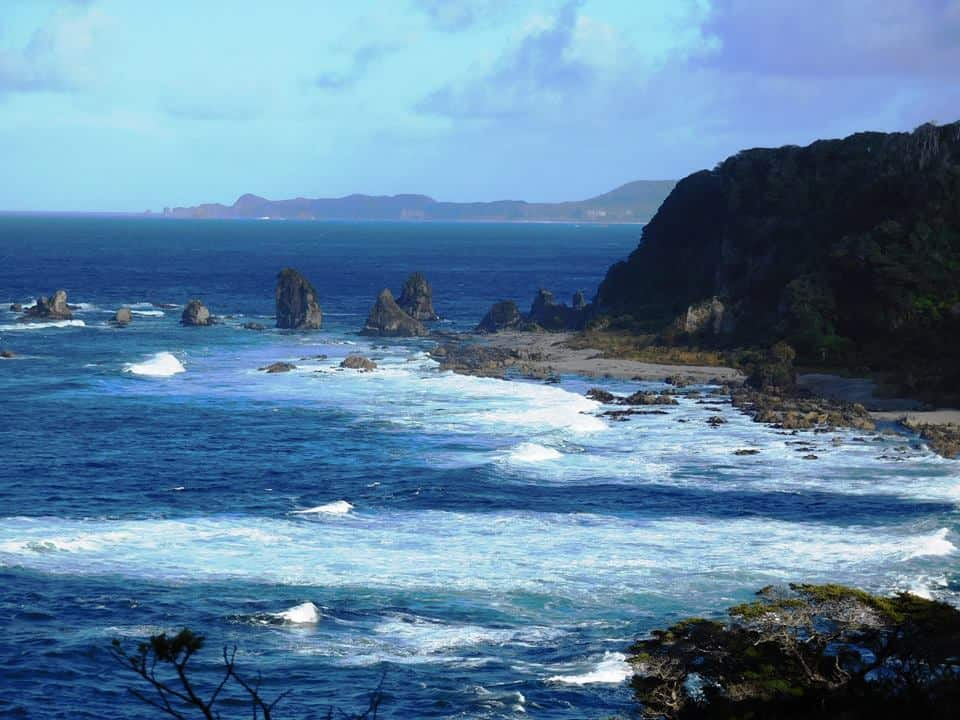 NZ's South Coast Track: Westies Hut to Cromarty:
