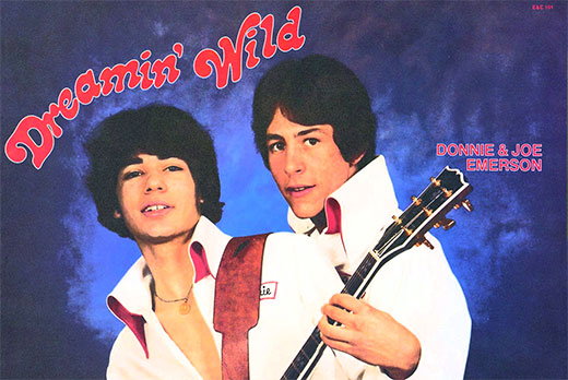 Donnie & Joe Emerson - Dreamin' Wild