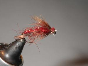 Hackle and head