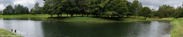 Panorama of Green Frof Fishery