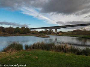 Fishery and Friarton Bridge