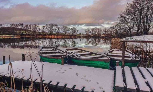 Swanswater Trout Fishery