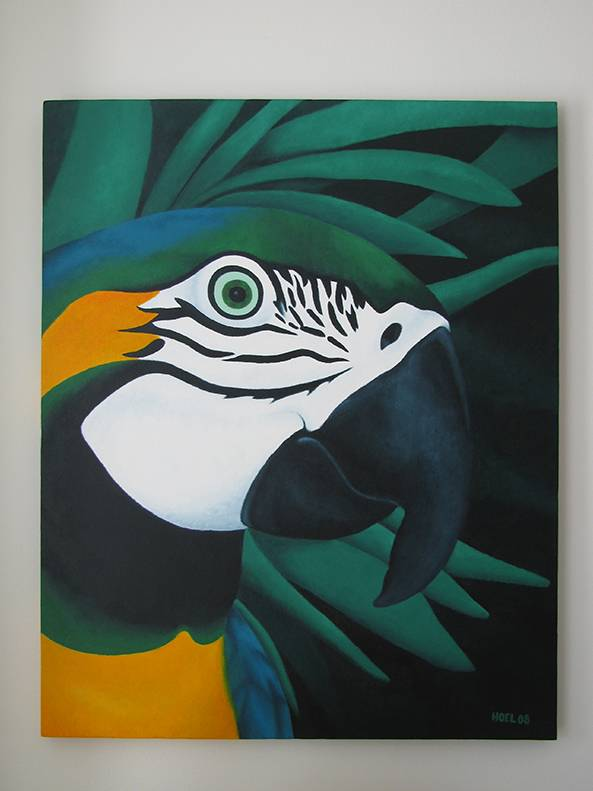 Macaw by Jessica Hoel